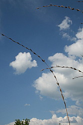 weise, Wolke, Himmel, Eile, Hast, Entspannung, Ruhe, Besinnung